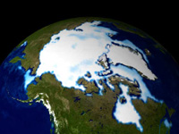 Arctic sea ice 1990