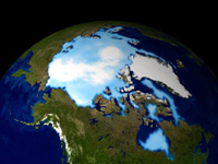 Arctic sea ice 1999